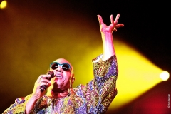 Stevie Wonder  - (c) Ron Beenen